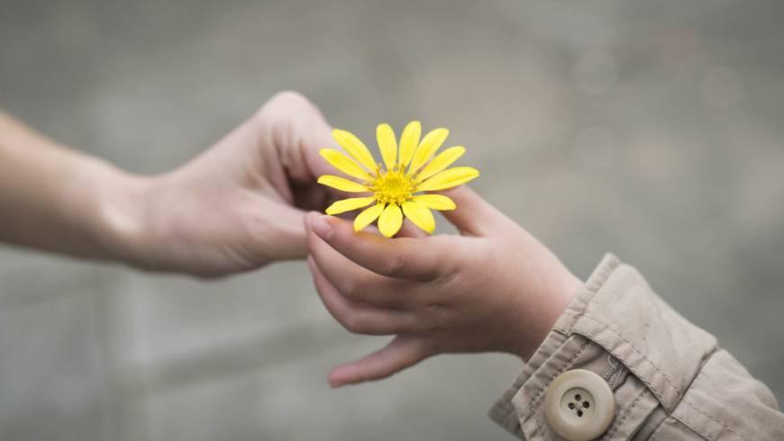Experimento de actos de bondad
