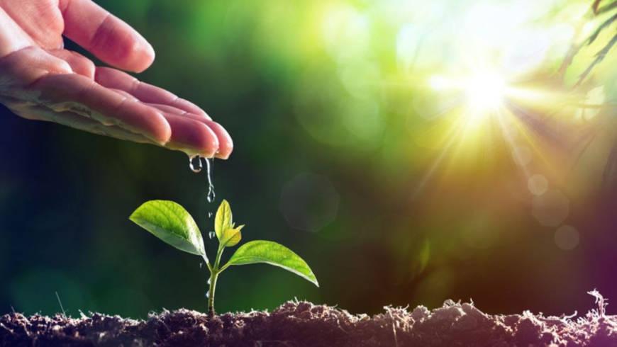 Recursos gratuitos para la conexión y resiliencia